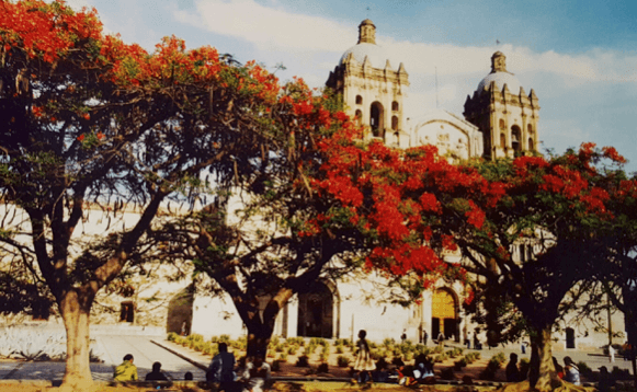 chapa-oaxaca-mexico-cathedral-and-trees