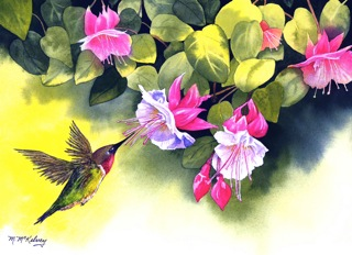 © Mary McKelvey- Humming Bird