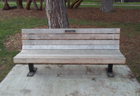 Wood Bench with plaque